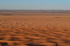 5. desierto