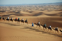 desierto-caravana2.JPG